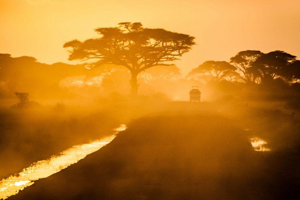 Tanzania-days